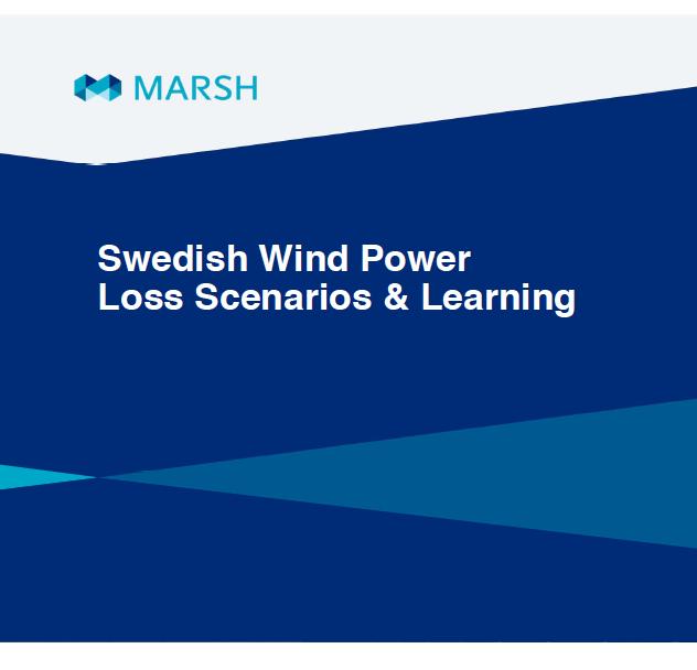 Undersökning: vanligaste skadorna på vindkraftverk