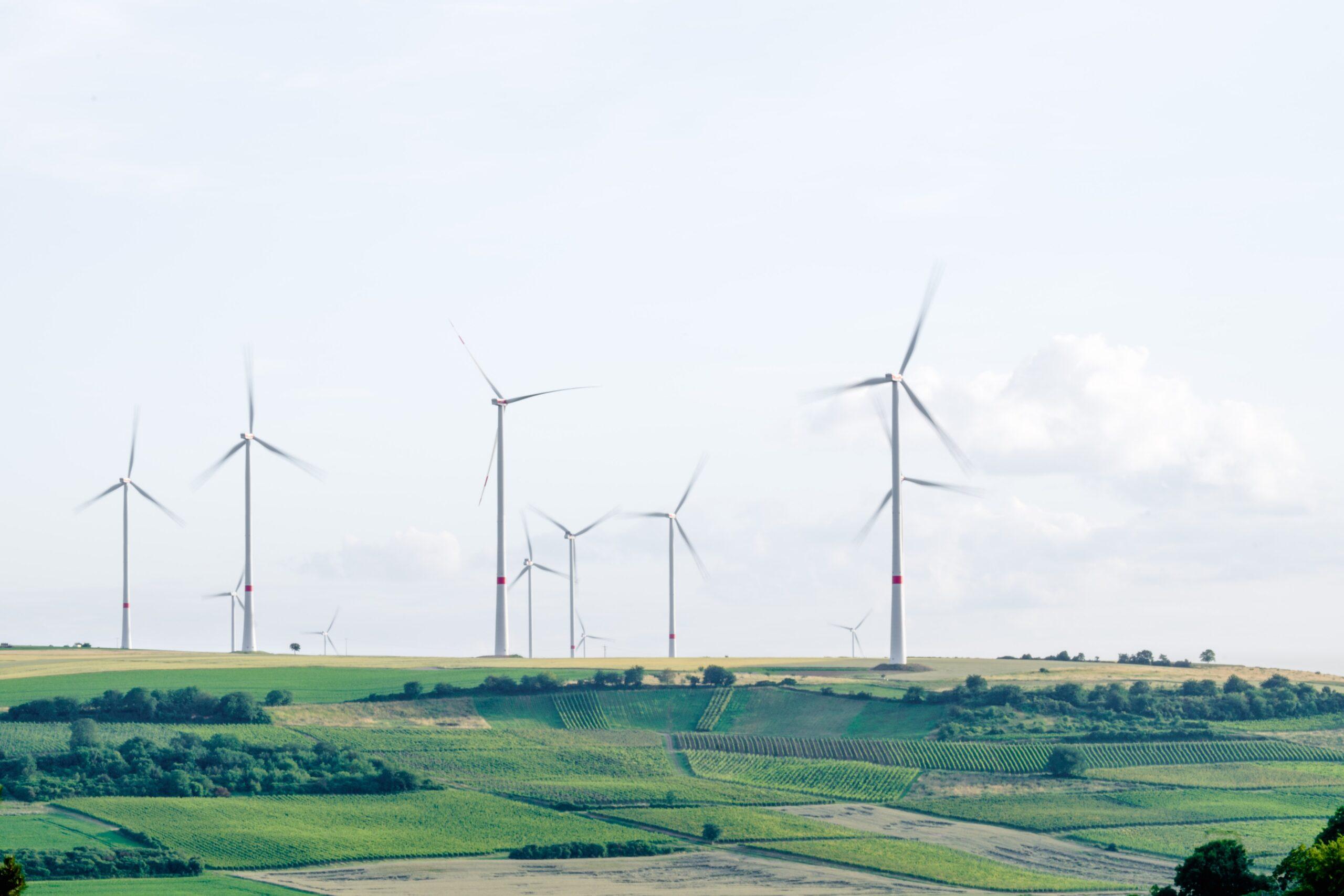 Om vindkraft i årets budgetproposition