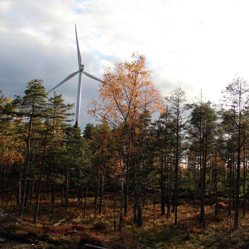 Vindkraft Årjäng