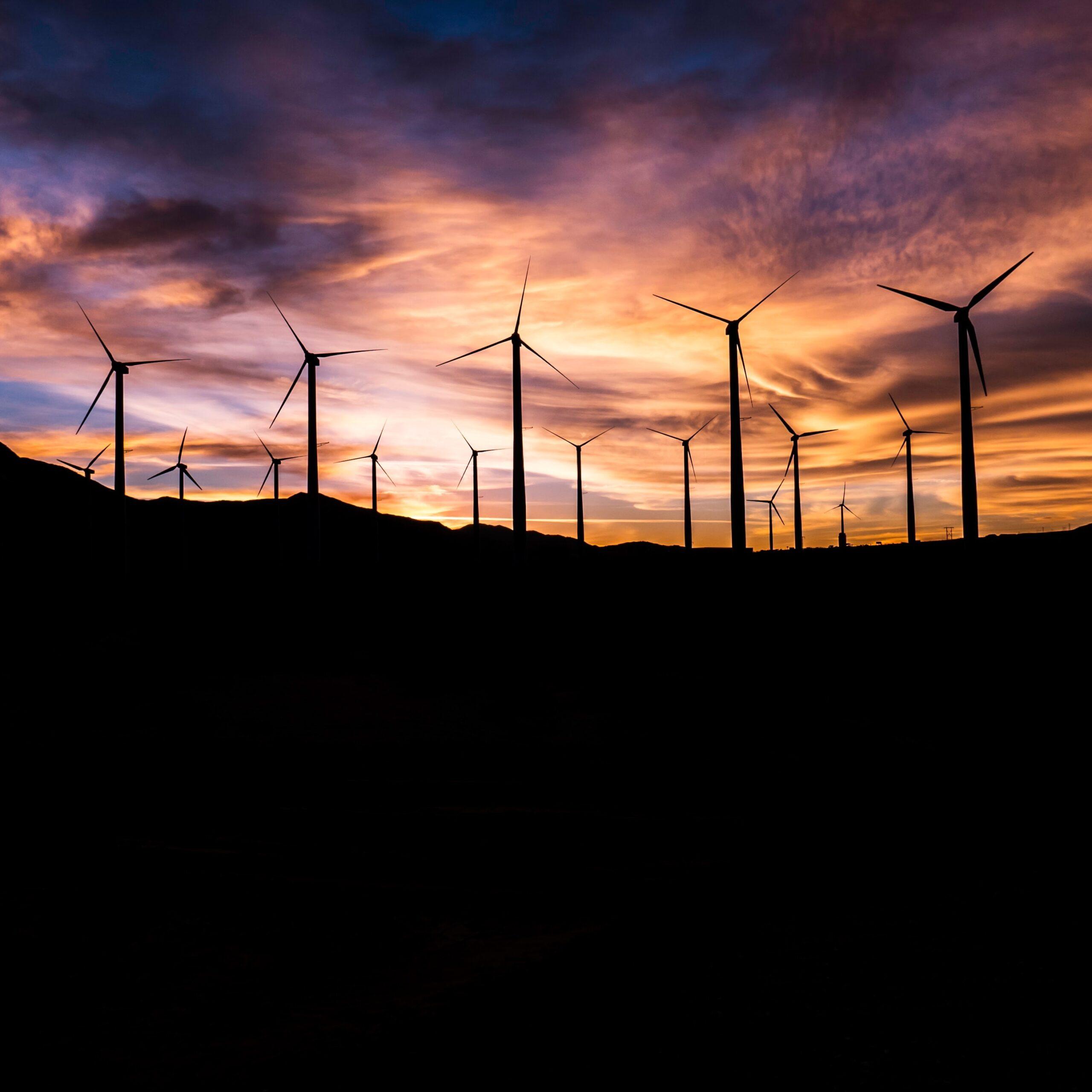 """Anders Wijkman: """"Vindkraft är det enda hållbara alternativet"""""""
